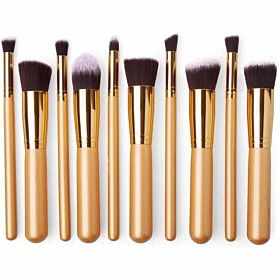 Professional Synthetic Kabuki Makeup Brushes, Set Of 10 Piece [FAS-MB-17-Go]